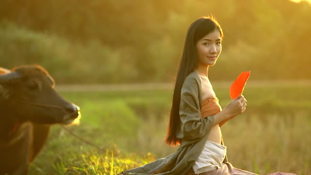Portrait of beautiful asian woman sitting on the field in the evening with warm lighting of sunset. video