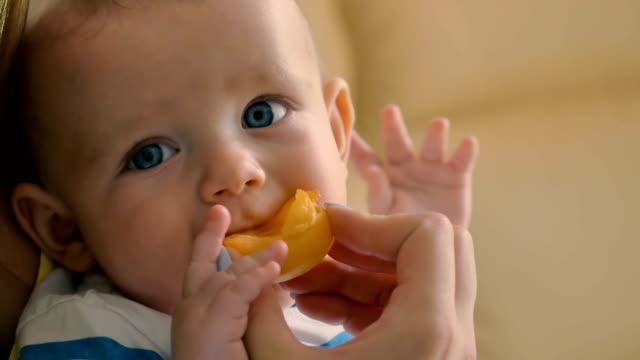 vídeos de stock e filmes b-roll de portrait of charming baby is eating an apricot - damasco fruta