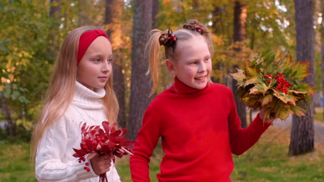 portrait of cheerful girls holding bouquets with autumn leaves and rowan - occhiata laterale video stock e b–roll