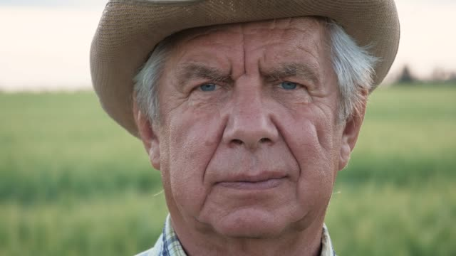 Portrait Of Elderly Man With Tanned Wrinkled Face Looking At Camera In Outdoor