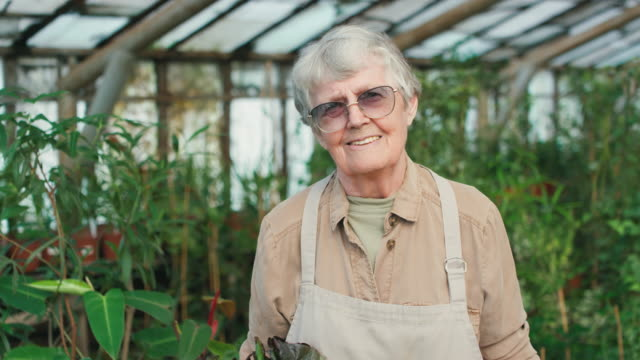 portrait of elderly woman posing with fresh vegetables - agricoltrice video stock e b–roll