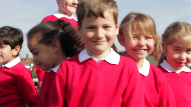 Portrait Of Elementary School Pupils On Climbing Frame video