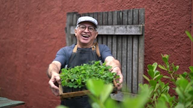 porträt von bauer zeigt pflanzen - verantwortung stock-videos und b-roll-filmmaterial