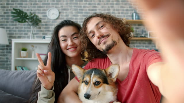 Portrait of happy couple taking selfie with corgi dog at home showing thumbs-up Portrait of happy multi-ethnic couple taking selfie with beautiful corgi dog at home showing thumbs-up posing for camera. People, animals and lifestyle concept. hipster stock videos & royalty-free footage