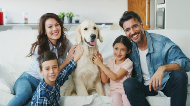 Portrait of happy family with a dog having fun together in living room in slow motion.