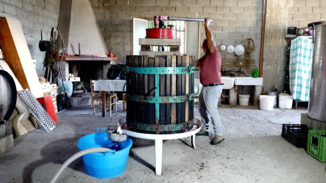 portrait of homemade wine: farmer manually presses the grapes in the press video