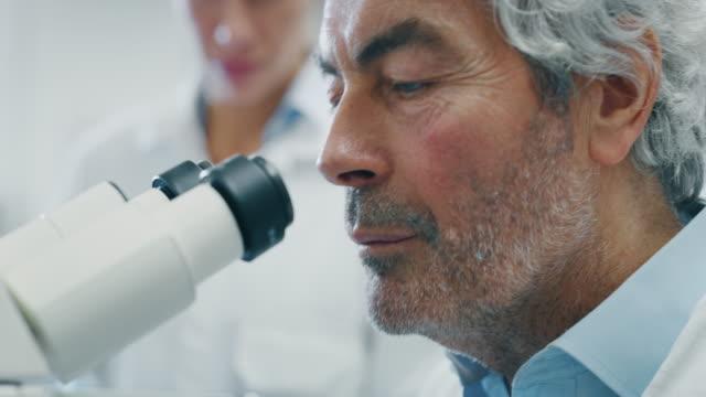 男性科学者と彼のアシスタントの肖像画は、実験室で顕微鏡でdnaと分子を抽出するためにサンプルを分析します。 - 研究所点の映像素材/bロール