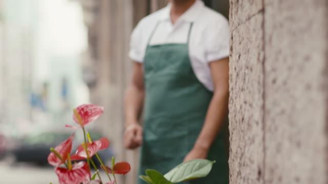 portrait of man working as florist in flower shop video