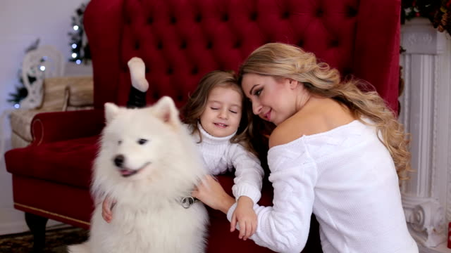 vídeos de stock e filmes b-roll de portrait of mother with daughter and dog on couch. - samoiedo