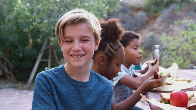 vídeos de stock e filmes b-roll de portrait of smiling boy with friends eating healthy picnic at outdoor table in countryside - comida sustentavel