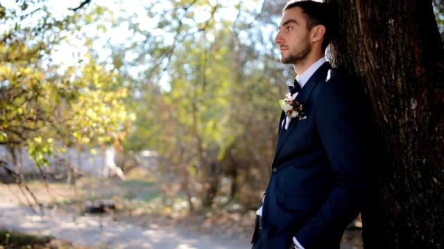 Portrait of the groom.Young man near the tree video