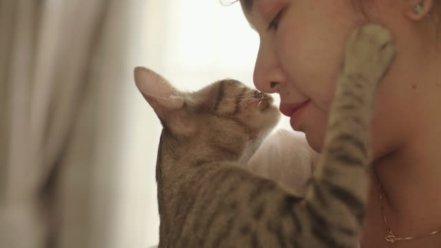 Portrait of woman hugging and kissing her pet kitten.