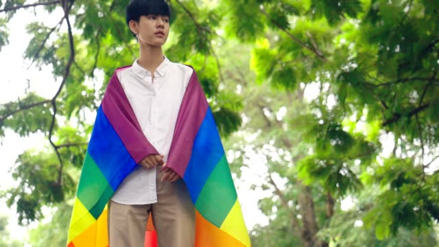 Portrait of Young Asian Girl Covered With Rainbow LGBT Flag, Slow motion Portrait of Young Asian Girl Covered With Rainbow LGBT Flag, Slow motion transsexual stock videos & royalty-free footage