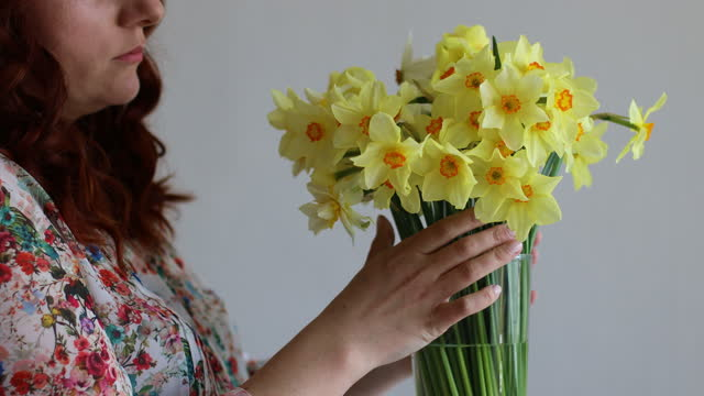 Portrait of young romantic smiling beautiful woman girl sniffing smelling yellow daffodils flowers in bouquetPortrait of young romantic smiling beautiful woman girl sniffing smelling yellow daffodils flowers in bouquet