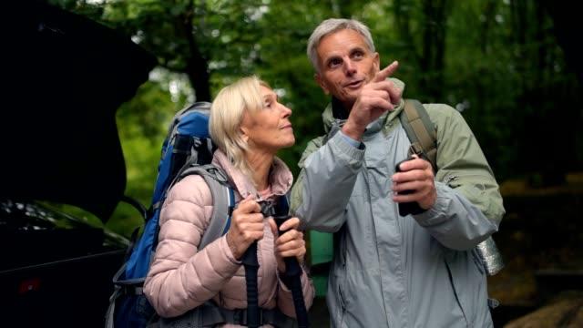 正歳森で休んで観光客のカップル - 自然旅行点の映像素材/bロール