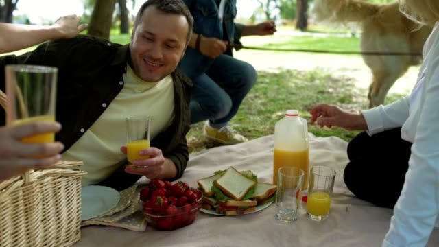 Positive family enjoying picnic in the park video