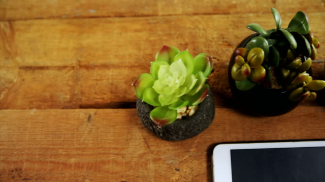Pot plant, black coffee, spectacles and digital tablet on wooden table 4k video