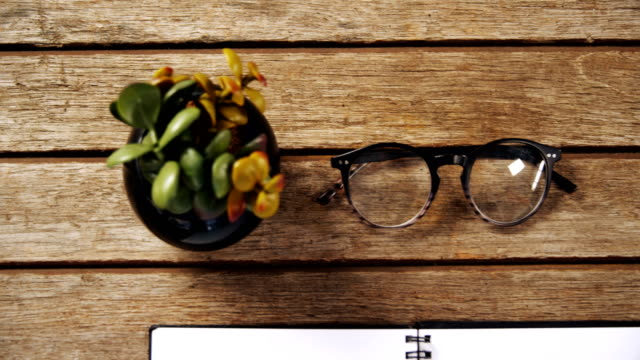Pot plant, black coffee, spectacles, organizer and pen on wooden table 4k video