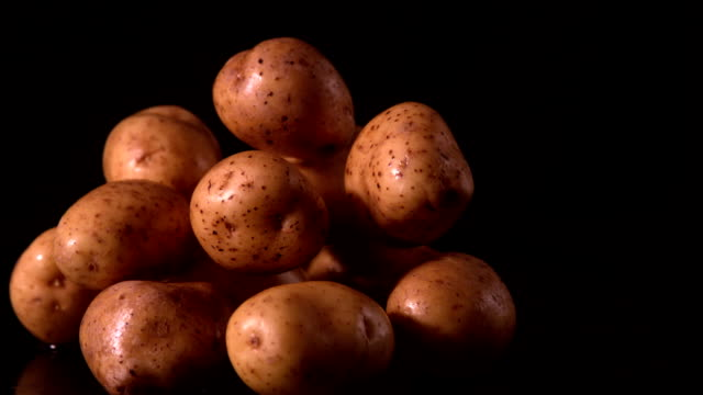 patate cadere sul mucchio di patate - patate video stock e b–roll