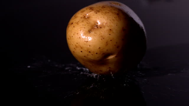 Potato falling on wet black background video