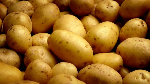 potato pile moving shot - молодой картофель стоковые видео и кадры b-roll