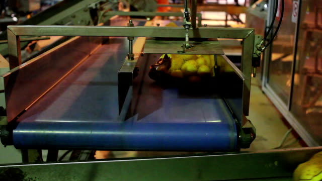 Potatoes After Packaging on a Factory Line video