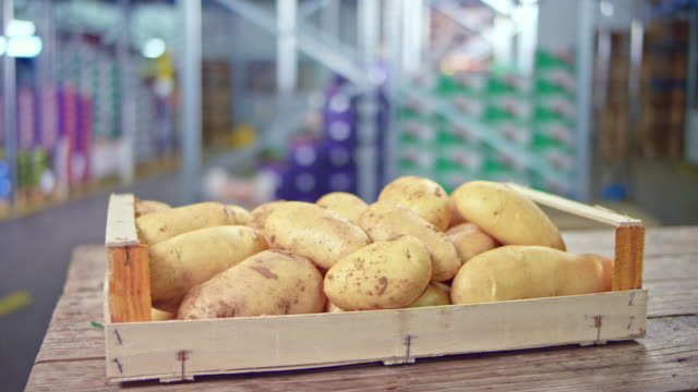 DS Potatoes in a wooden crate on a table in the fresh produce warehouse Wide dolly shot of a wooden crate full of potatoes set on a table in the fresh produce warehouse. Shot in Slovenia. tuber stock videos & royalty-free footage