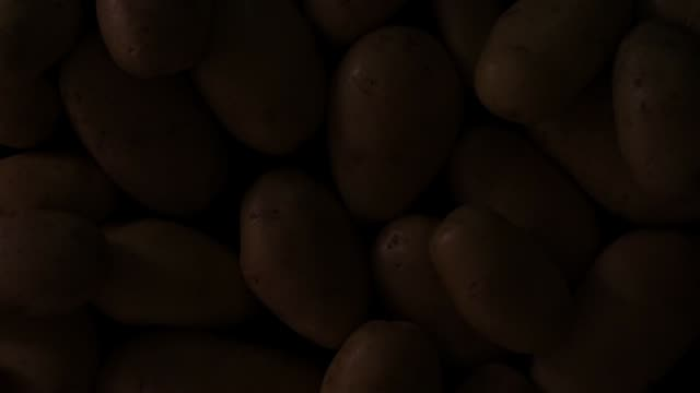 potatoes pattern with moving light potatoes pattern with moving light side lit stock videos & royalty-free footage