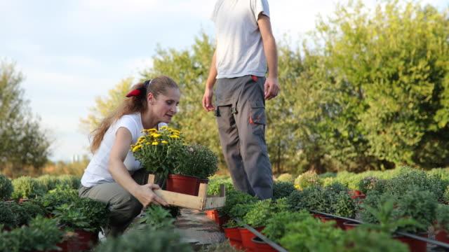 Blumenimbiss im Garten – Video