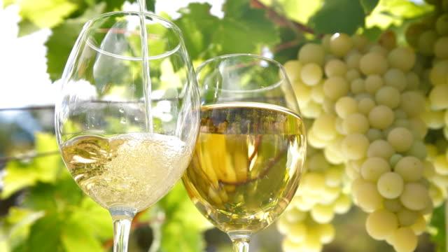 pouring a glass of wine - vitt vin glas bildbanksvideor och videomaterial från bakom kulisserna