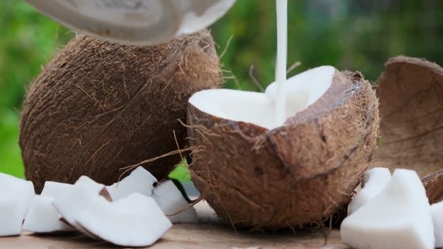hälla färsk kokosmjölk på träbord. på nära håll. - skalhylsa bildbanksvideor och videomaterial från bakom kulisserna