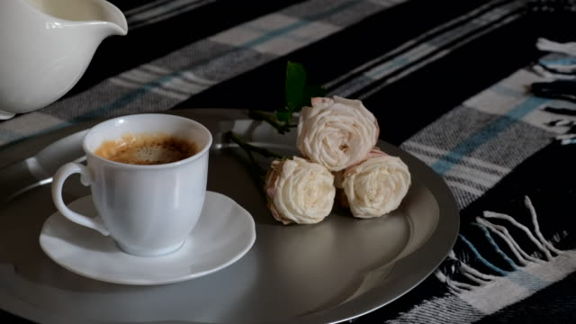 pouring milk from milkman in white cup with hot coffee. morning breakfast concept. breakfast in bed. adding milk in mug of warm cappuccino on tray in bedroom - lattaio video stock e b–roll