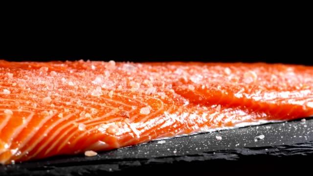 vídeos de stock, filmes e b-roll de derramando sal no filé de salmão cru. - louça