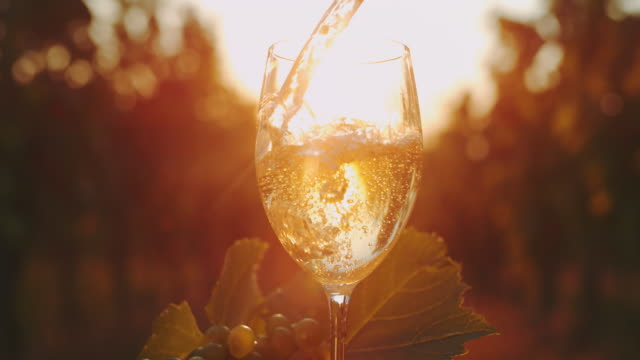 slo mo pouring white wine into a glass at sunset - grape stock videos & royalty-free footage