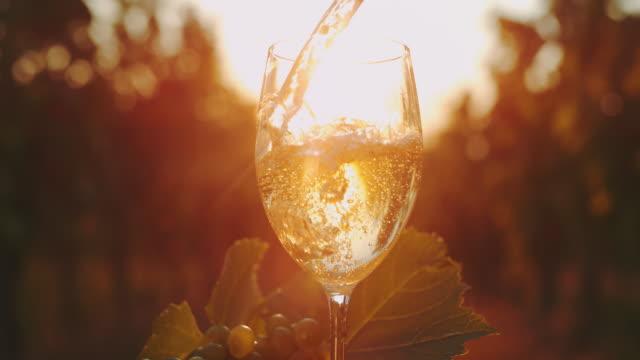 vídeos de stock e filmes b-roll de slo mo pouring white wine into a glass at sunset - grapes