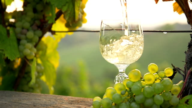 hd super slow-motion: versare vino bianco - azienda vinivola video stock e b–roll