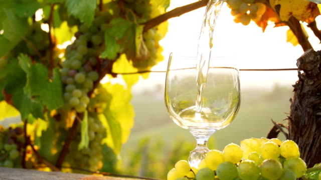 HD SUPER SLOW-MO: Pouring Wine In A Sunny Vineyard video