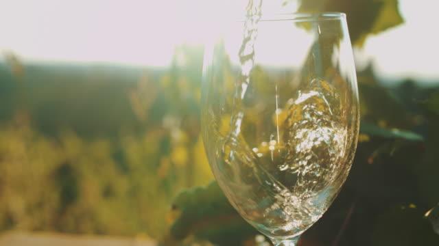 slo mo hälla vin i vingården - vitt vin glas bildbanksvideor och videomaterial från bakom kulisserna