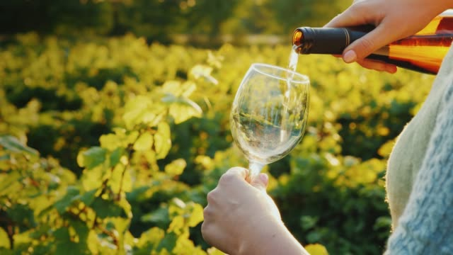 vídeos de stock e filmes b-roll de pouring wine into a glass on the background of the vineyard. wine tour concept - vinho