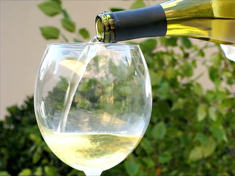 pouring wine - vitt vin glas bildbanksvideor och videomaterial från bakom kulisserna