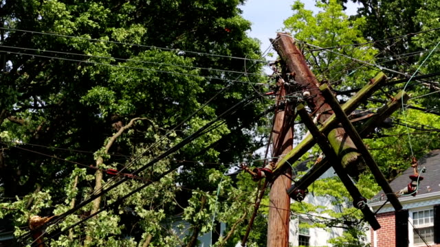 Power Line Destroyed A power line hangs destroyed following a catastrophic storm.  power line stock videos & royalty-free footage