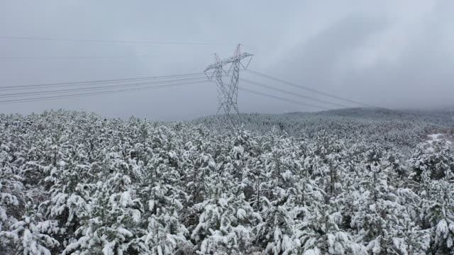 Power Line, High Voltage Towers, Snowy, Drone Shot, Forest