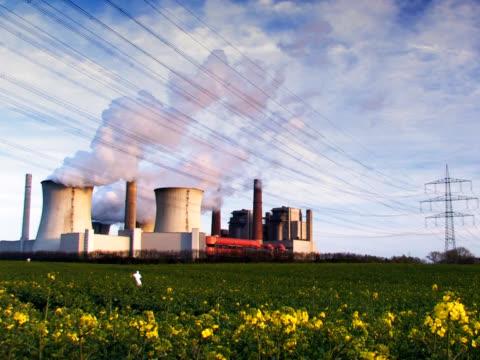 pal : 発電所 - 顕花植物点の映像素材/bロール