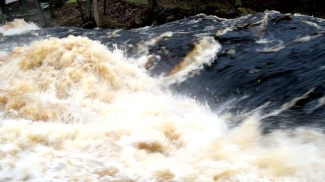 kraftfull vårfloden - flod vatten brygga bildbanksvideor och videomaterial från bakom kulisserna