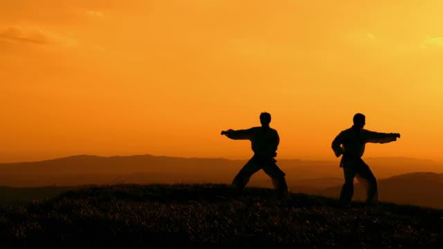 HD CRANE: Practising Martial Arts Outdoors
