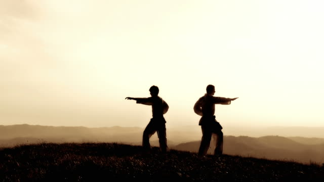 HD CRANE: Practising Martial Arts Outdoors video
