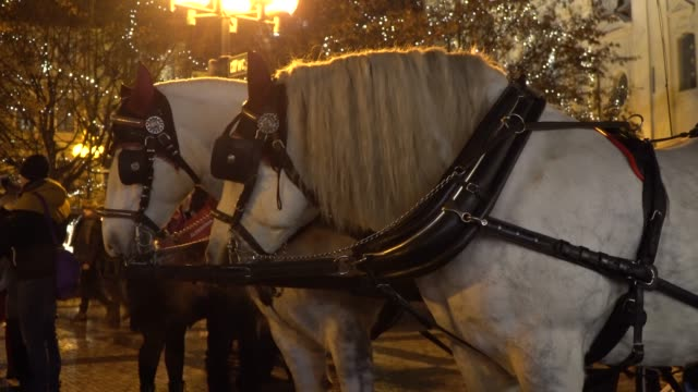 Prague, Czech Republic 2019: Carriage Horses in the Park on Christmas Market