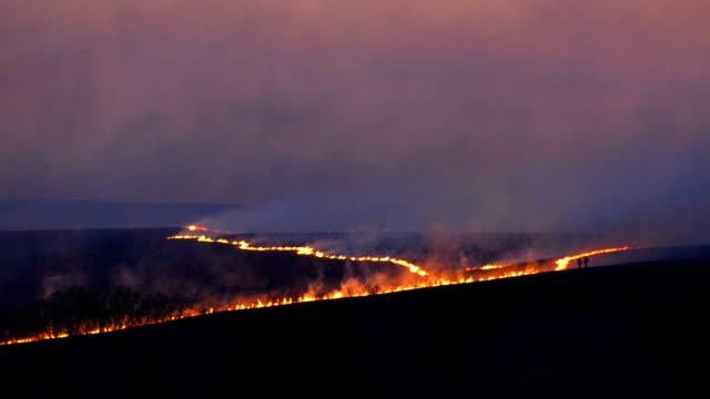 prairie burn - skog brand bildbanksvideor och videomaterial från bakom kulisserna