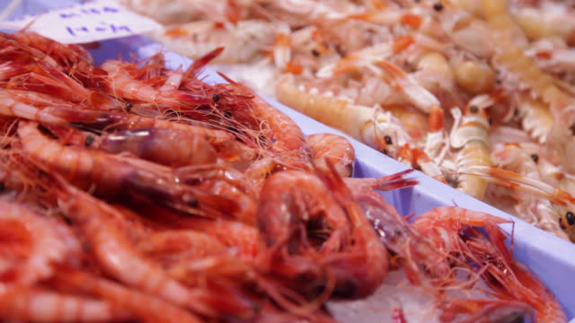 Prawns on display at a fish market counter Prawns on display at a fish market counter in Spain shrimp seafood stock videos & royalty-free footage