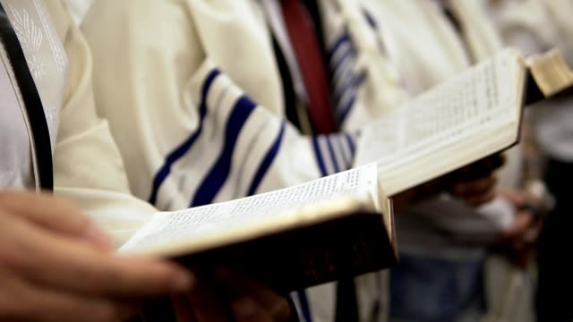 Praying with Torah close up shot of unrecognizable man reading torah book old testament stock videos & royalty-free footage